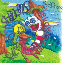 BullDoza - Not A Word About Shrooms (2010) 173